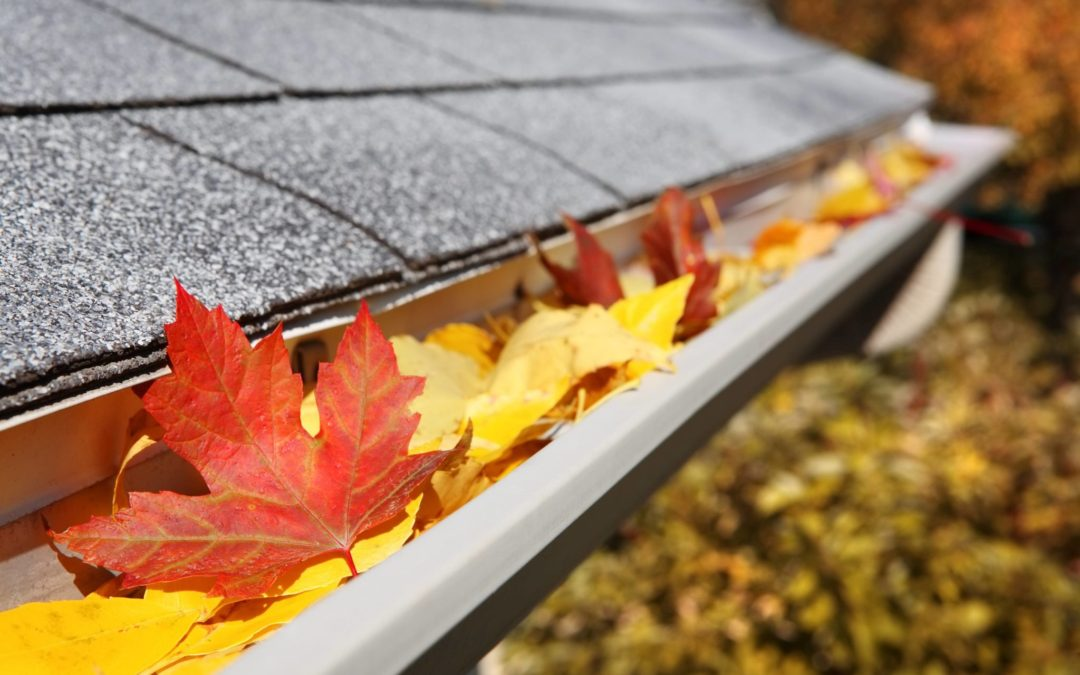Protect Your Gutters From Fall Leaves